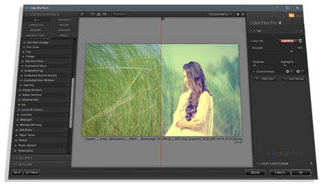 free download full version lightroom 3 how to download and install google nik collection full