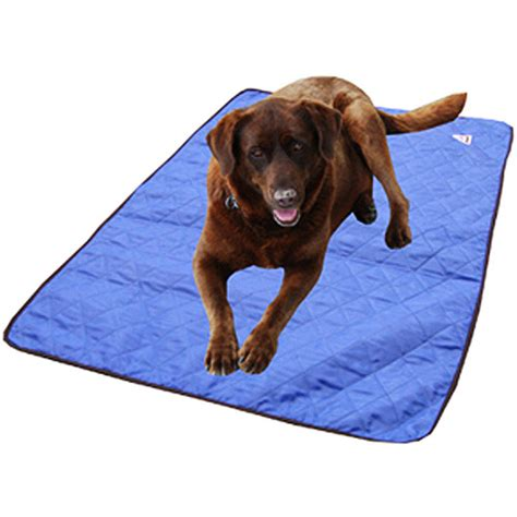 cooling mat for dogs walmart accept our apology
