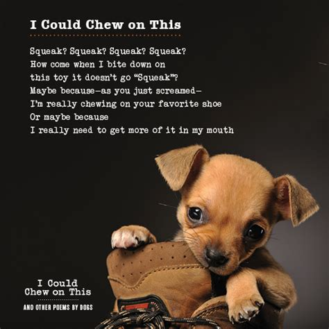 puppy poems i could chew on this book giveaway from chronicle books milk