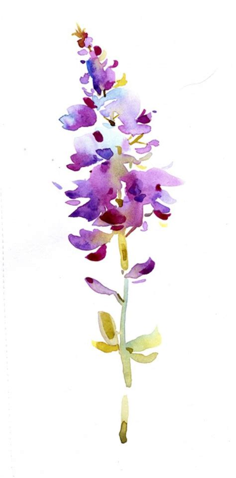 water color flowers the 25 best watercolour flowers ideas on