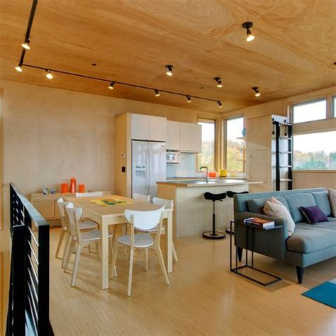 12 Best Images About Plywood Ceiling On Pinterest Ace Plywood Ceiling Ideas