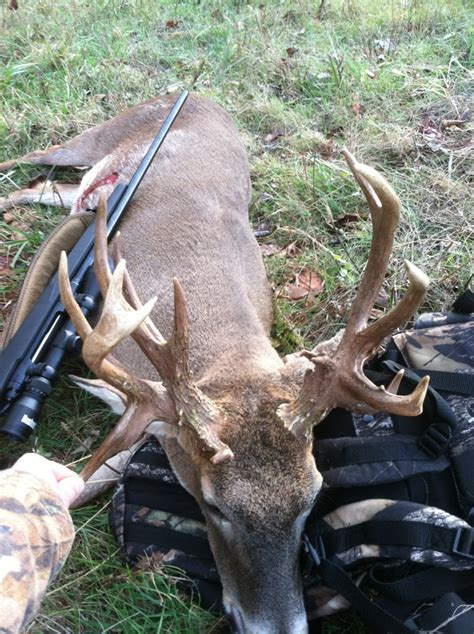 Tennessee Records Tn State Record Whitetail Deer Pictures To Pin On Pinsdaddy