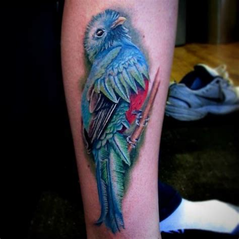 quetzal bird tattoo www pixshark com images galleries