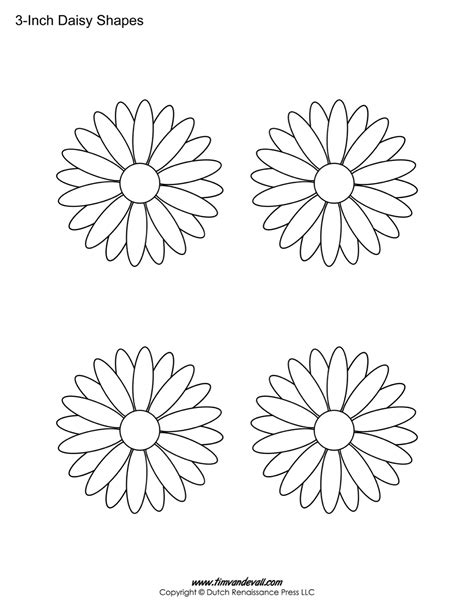 printable daisies flowers daisy template printable www imgkid com the image kid