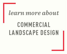 Mixed Memorable 55 Tx Oceanseven commercial landscape design expertise dekker perich