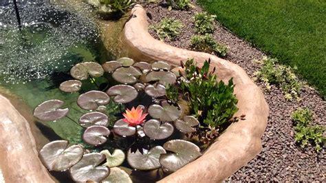 vasche da giardino per pesci laghetto stelvio per piante e pesci