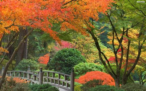 garden pictures for backgrounds wallpaper cave japanese garden desktop wallpapers wallpaper cave