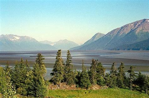 Tiny Cabin turnagain arm low tide