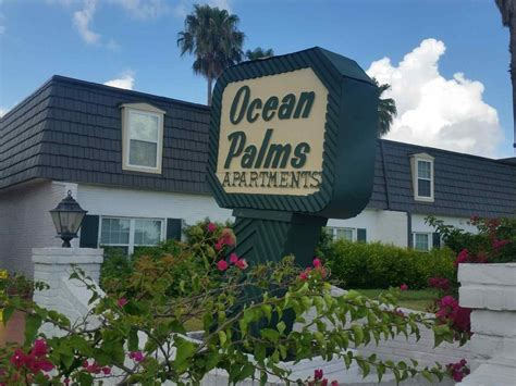 one bedroom apartments in corpus christi palms apartments rentals corpus christi tx