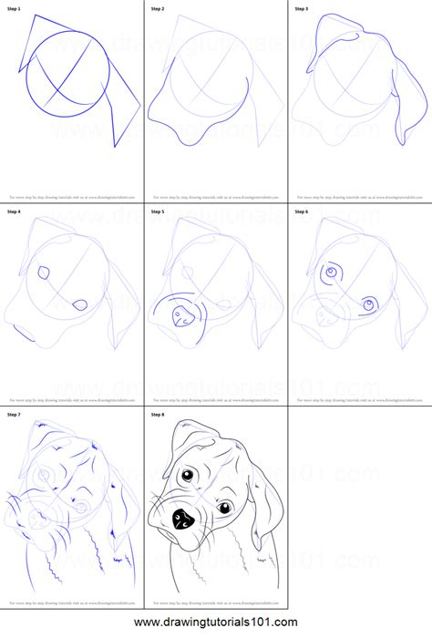 how to boxer how to draw boxer puppy printable step by step drawing sheet
