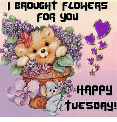 happy tuesday meme brought flowers for you happy tuesday meme on me me