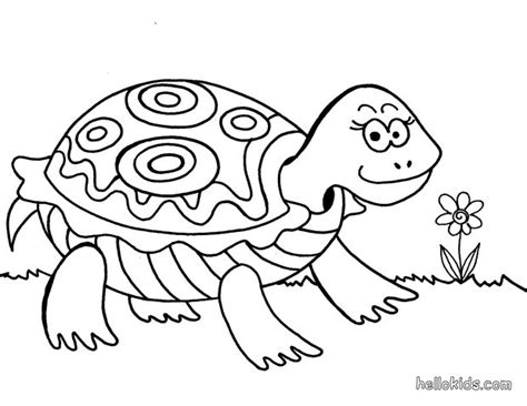 turtle love coloring pages free printable turtle coloring pages for kids
