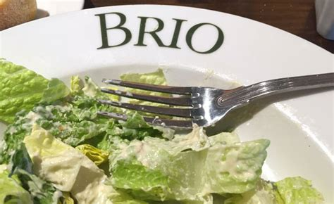 brio lunch review of brio tuscan grille 33388 restaurant 499 s university