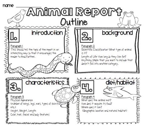 Report Writing Structure For Students by Animal Reports For For K Use These Topics For One Sentence So You