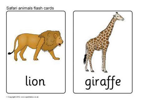 Animal Cards Template by Safari Animal Flash Cards Sb7723 Sparklebox