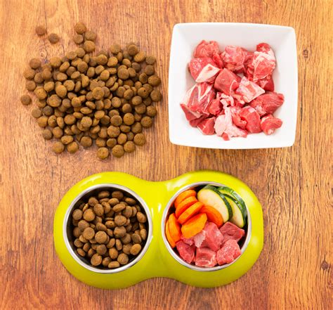 protein quality pet food protein quality learn about protein quality in