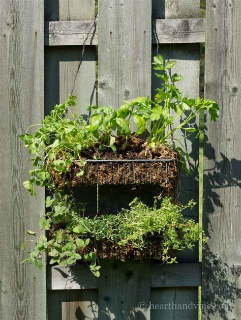 hanging herb garden how to make a simple hanging herb garden