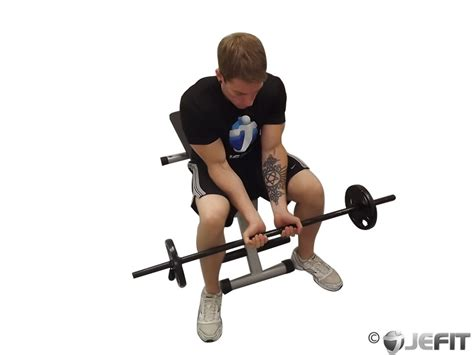ez bar seated grip concentration curl exercise database jefit best android and
