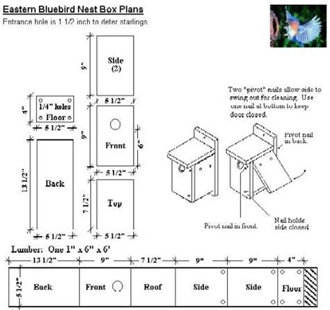 wren house plans pdf 25 best ideas about bluebird houses on pinterest blue