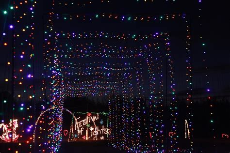 hollywild holiday lights show draws thousands news