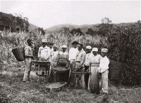 cafe si o no geografia em foco invent 225 das fazendas do vale do