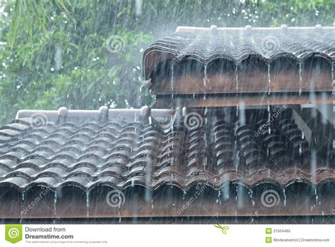 on the roof raining on the roof stock image image of drip downpour
