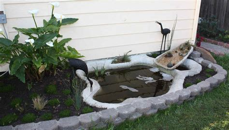 building a small pond bloggerluv