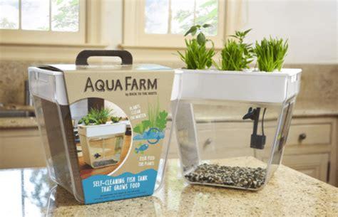 diy aqua farm aquafarm self cleaning fish tank that grows food aquaponics