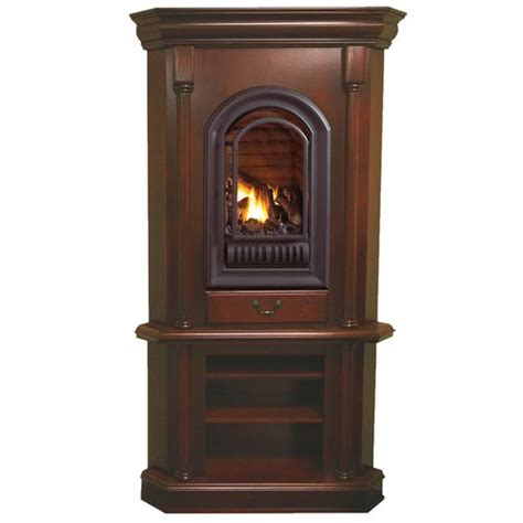 propane ventless fireplace 17 best ideas about ventless propane fireplace on