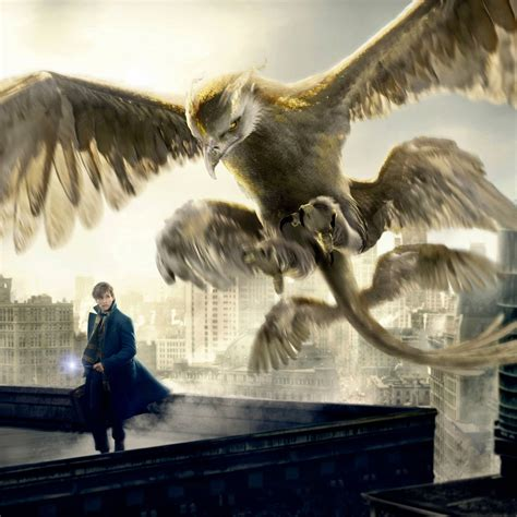 thunderbird fantastic beasts and where to find them