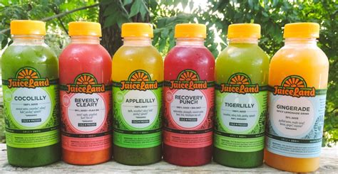 Juiceland Detox by Plant Based On The Go Ii An Airport Survival Guide