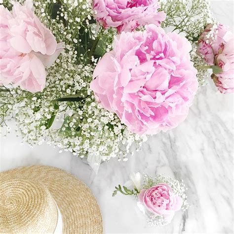 pink peonies instagram think pink salvaged inspirations