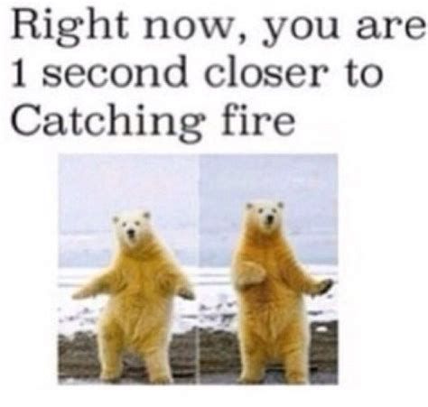 Dancing Polar Bear Meme - lol haha funny pics pictures polar bear dance animal