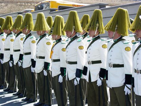 Presidential Guards Await Arrival of Mexican President Fox ...