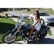 2008 Harley Davidson Fxstc Softail Customalways Garageddetachable