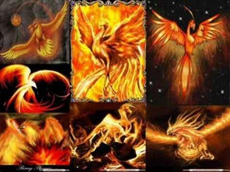 alas de fuego 8445002880 el ave fenix alas de fuego youtube