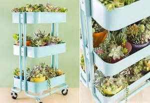 perfect indoor gardening ideas