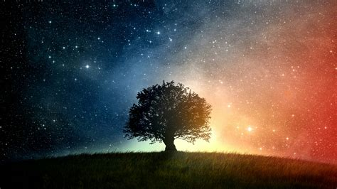 cool tree stars lone tree the starry sky wallpaper wallpaper studio 10 tens of thousands hd and