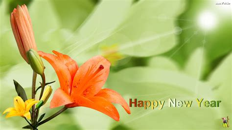 flower for new year 2016 happy new year 2016 flowers with happy new year happy