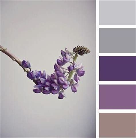 gray purple color best 20 purple gray bedroom ideas on pinterest purple