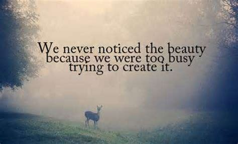 Nature Beauty Quotes Tumblr