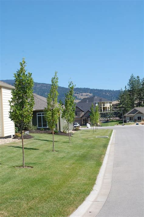 j s landscaping gallery j s landscaping ltd well trim your bush