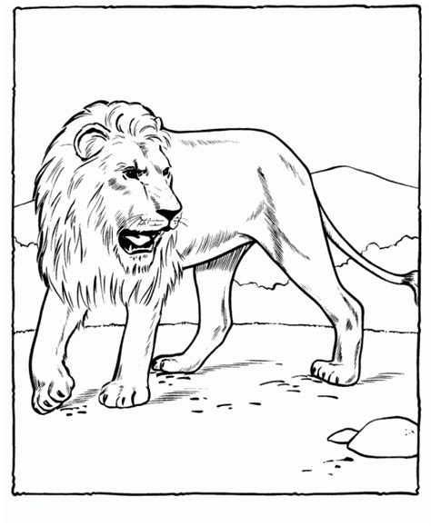 print out share this printable lion coloring pages online free printable lion coloring pages for kids