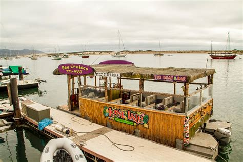 Leaky Tiki Bar Day Trips From Santa Barbara Archives Manipulated Reality