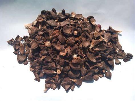 alibaba kirim ke indonesia biji kelapa sawit shell produk pertanian lainnya id