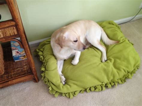 cheap n easy dog bed diy diy no sew doggy bed or floor pillow