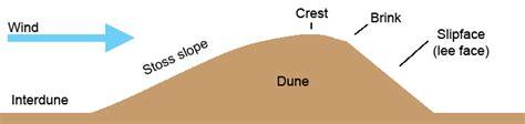 sand dune cross section aeolian terminology