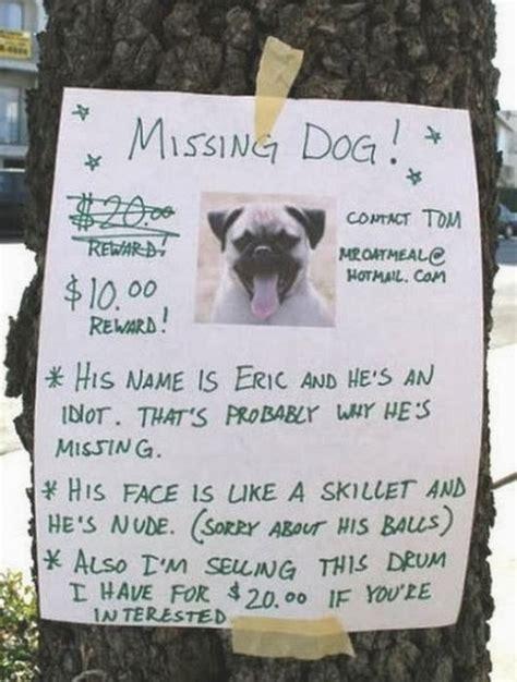 lost dog quotes quotesgram