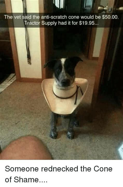 Cone Of Shame Meme - funny scratch memes of 2017 on sizzle dank