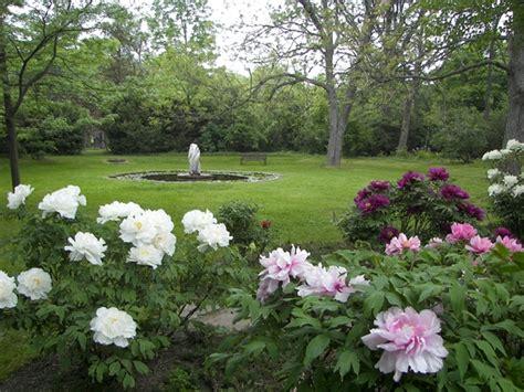 Peony Garden Cranberry Design Ideas Peony Garden Design Ideas